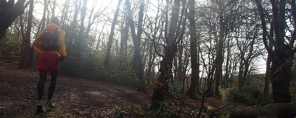 Trail running at Epping Forest on a winter day